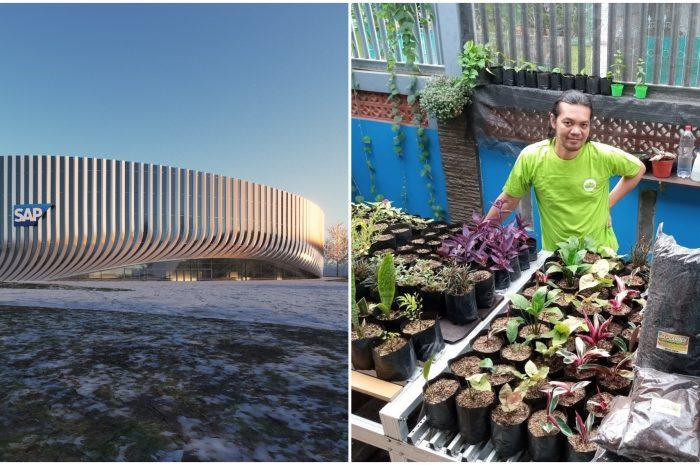 """Pflanzenwelt statt Arena: Was hinter den """"#SAPGarden""""-Fotos im Netz steckt"""